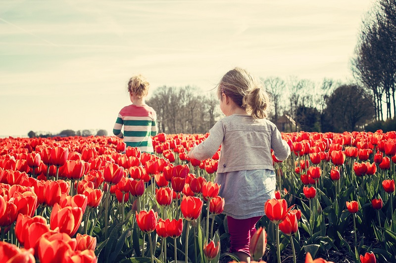 Things to do Outside for Families in May 2020