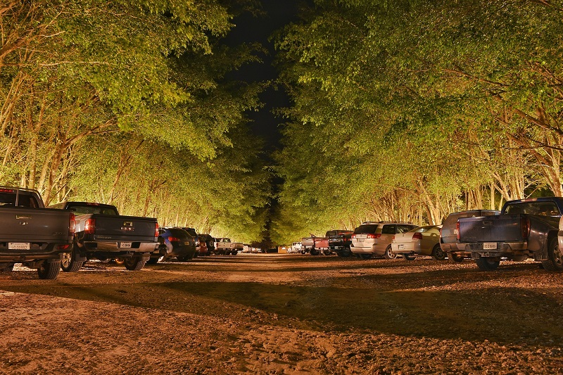 Truex General Area Lighting A Parking Lot Lit with Area Lighting