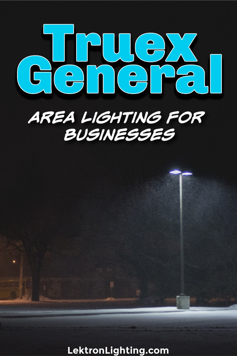 Truex general area lighting for business can help you light the way for clients, customers, and anyone else who may require some sight.