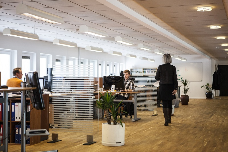 Energy Saving Products Office Building Interior with People Working at Desks