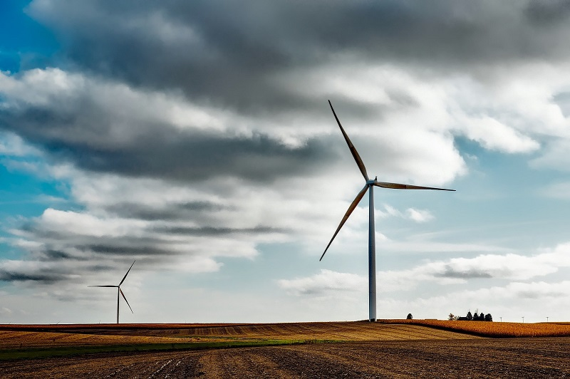 Business Energy Efficiency Ideas Wind Turbines in a Field